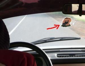 Osama bin Laden na szybie samochodu