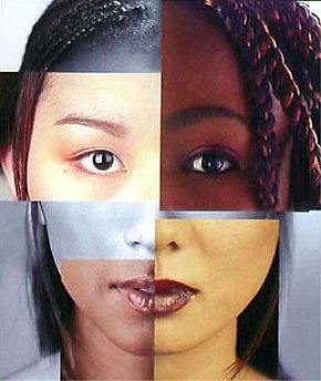 culture ethnocentrism essay