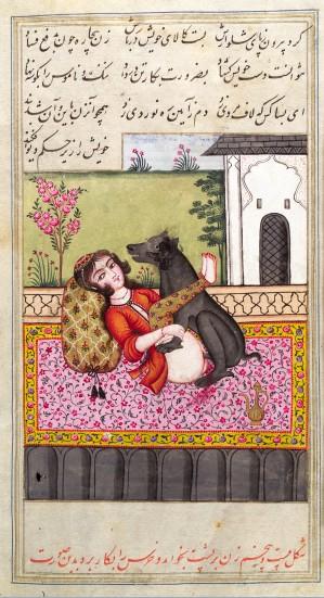 Podręcznik zoofilii z XV wieku, Iran