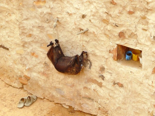 Worek na wodę - z kozy
